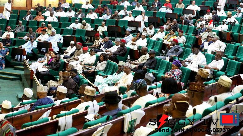 The House of Reps have began to probe the National Youth Service Corps over alleged advice to Corp Members for Payment of ransom to kidnappers in its revised booklet containing NYSC guidelines, Siggy.ng reports.