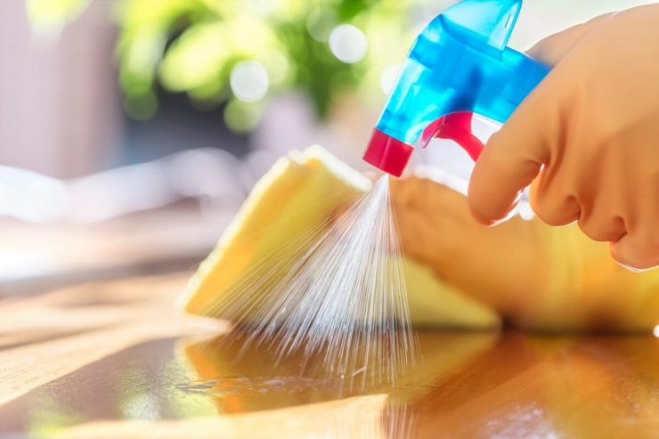 house-cleaning-services-1